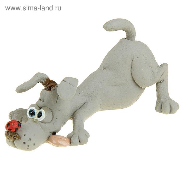 """Сувенир - миниатюра """"Пес с божьей коровкой"""""""