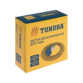 "Щетка металлическая TUNDRA, для УШМ ""тарелка"" М14, 100 мм"