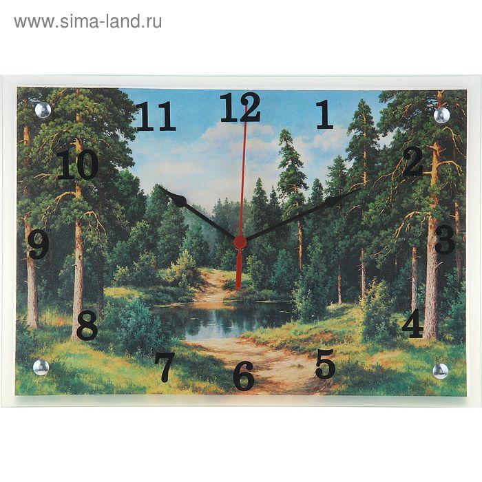 """Часы настенные прямоугольные """"Природа, дорога к воде"""", 25х35 см"""