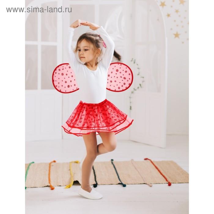 """Карнавальный набор """"Маленькое чудо"""", 2 предмета: крылья, юбка, 3-6 лет, цвет красный"""