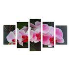 """Модульная картина на подрамнике """"Орхидеи на ветке"""", 2 — 43×25, 2 — 58×25, 1 — 72×25 см, 72×125 см"""