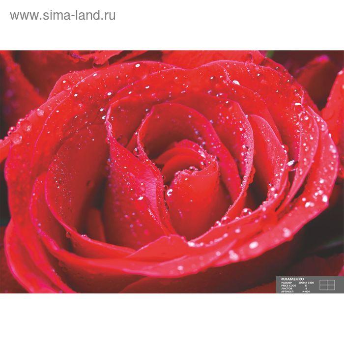 Фотообои К-004 «Фламенко» (4 листа), 210 × 140 см