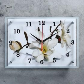 Часы настенные прямоугольные 'Орхидея', 25х35 см микс Ош