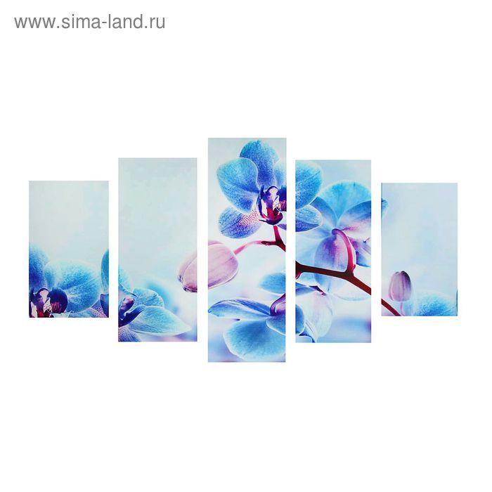 """Модульная картина на подрамнике """"Голубая орхидея"""", 2 — 43×25, 2 — 58×25, 1 — 72×25 см, 135×75 см"""