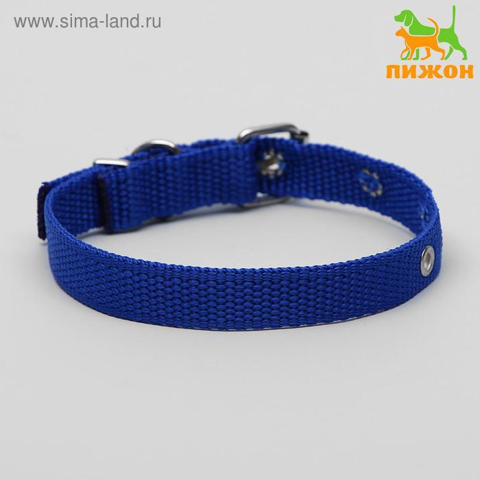 Ошейник 33,5 х 1,5 см, полиэстр, синий
