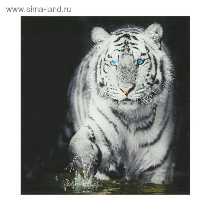 """Картина на стекле """"Тигр"""""""