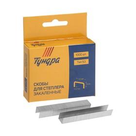 "Скобы для степлера ""TUNDRA basic"" закалённые, тип 53, (11,3 х 0,7 мм), 10 мм (1000 шт.)"