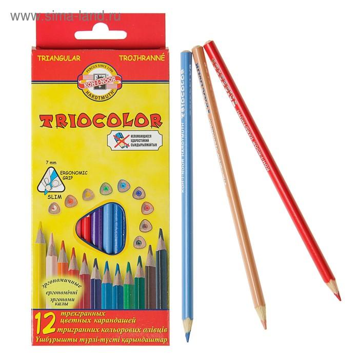 Карандаши трехгранные 12 цветов TRIOCOLOR, европодвес