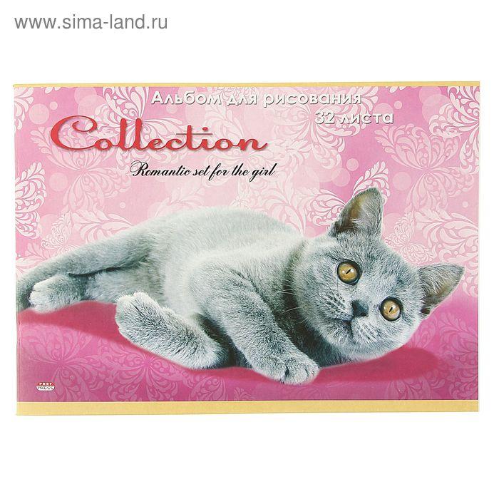"""Альбом для рисования А4, 32 листа на скрепке """"Дымчатый котенок"""", обложка картон 240г/м2, блок офсет 100г/м"""