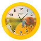 "Часы настенные круглые ""Божья коровка"", жёлтый обод, 30х30 см"