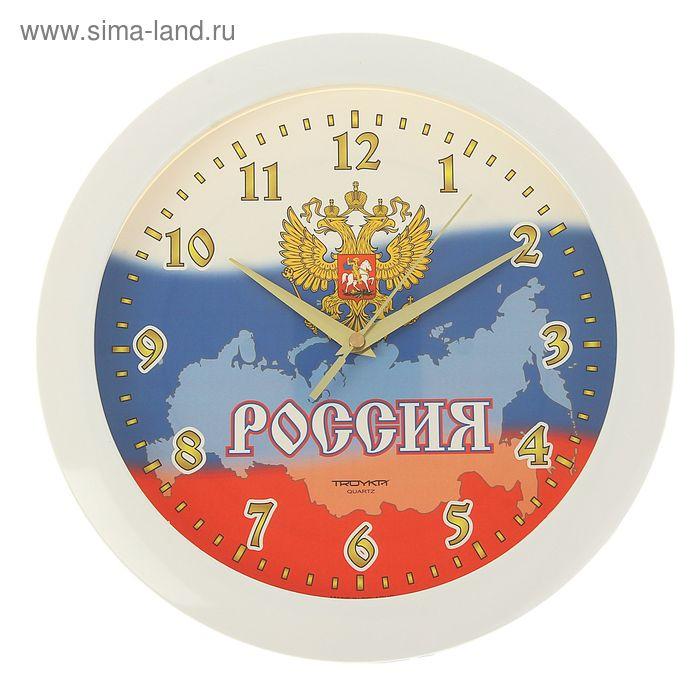 "Часы настенные круглые ""Триколор, Герб"", белый обод, 29х29 см"