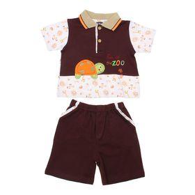 """Комплект для мальчика (футболка+шорты) """"Черепашка"""", рост 74-80 см (6-9 мес.), цвет коричневый"""