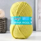 Пряжа ArinaWool (АринаЧШ) 95% шерсть, 5% акрил 123м/100гр (345 липа)