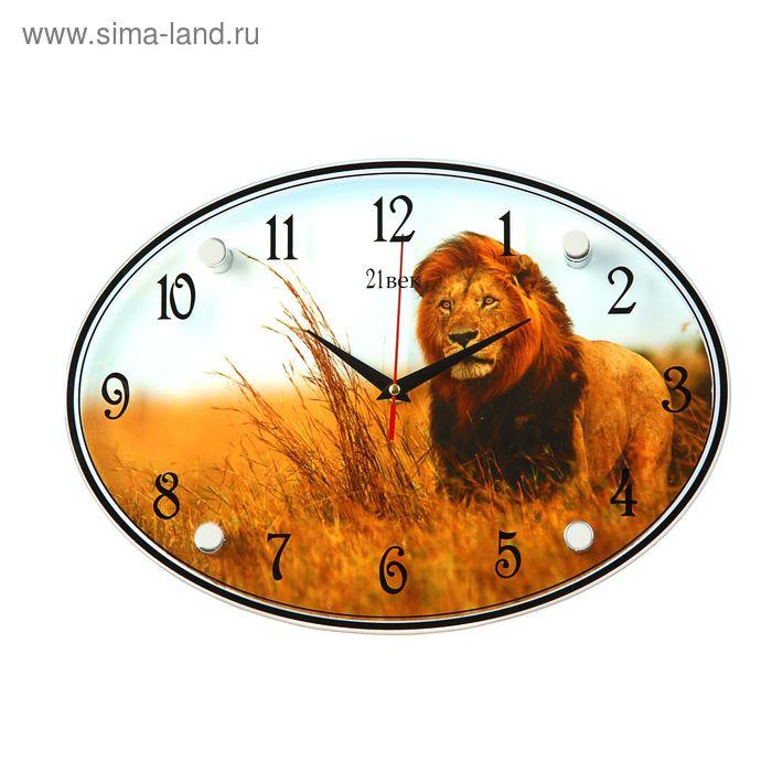 """Часы настенные овальные """"Лев"""", 24х34 см"""