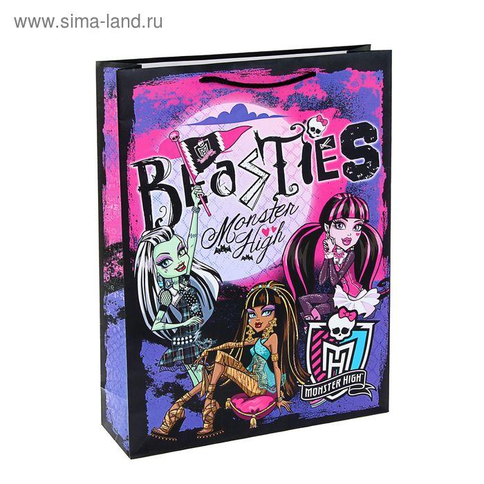 """Пакет подарочный """"Школа монстров"""" 33х43 см, Mattel Monster High"""
