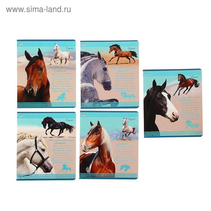 """Тетрадь 48 листов клетка """"Прекрасные лошади"""", картонная обложка, бирюзовое тиснение, МИКС"""