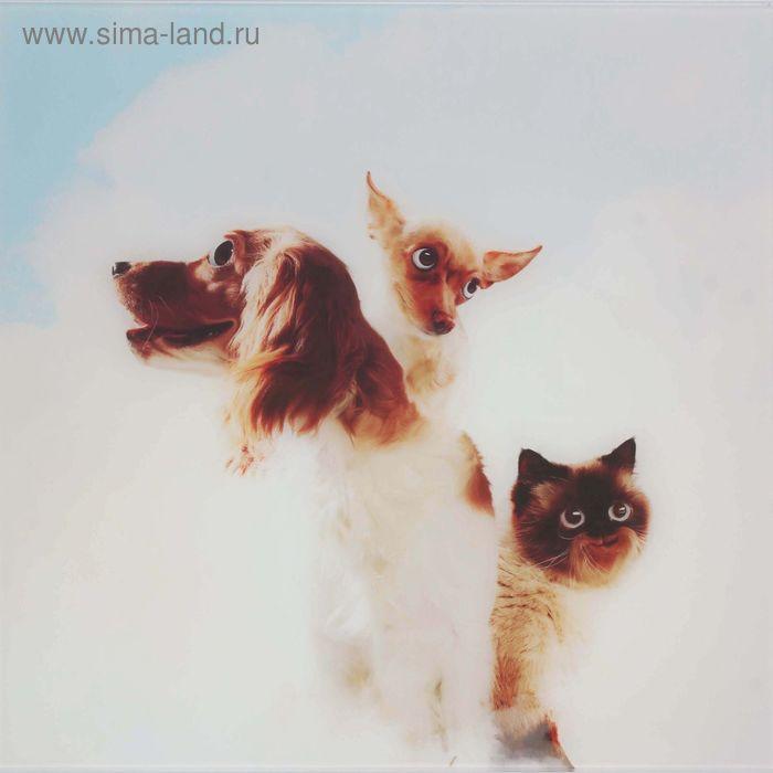 """Картина на стекле """"Питомцы в облаках"""" трио"""