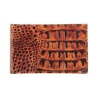Визитница V-19-300, 1 ряд, 16 листов, коричневый