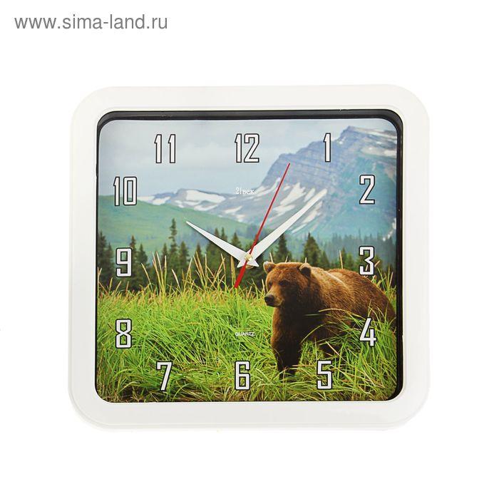 "Часы настенные квадратные ""Медведь"", 30х30 см"
