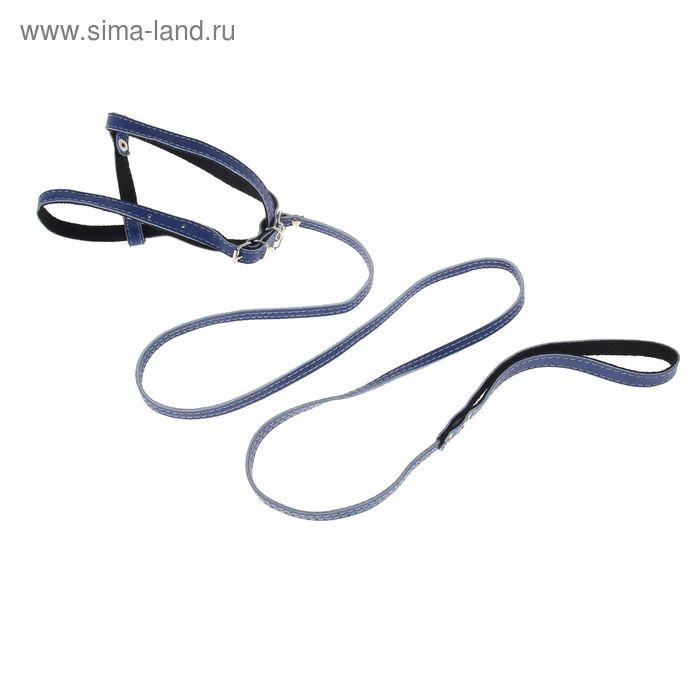 Компл. кожаный двухслойный, шлейка регулируемая многоразмерная 1,2 см и поводок 130 см, микс