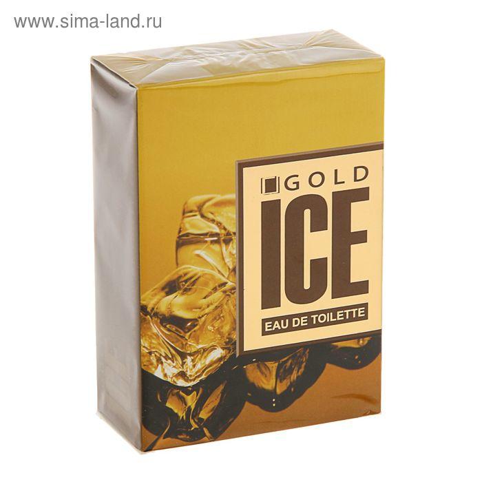 Туалетная вода мужская Ice Gold, 100 мл