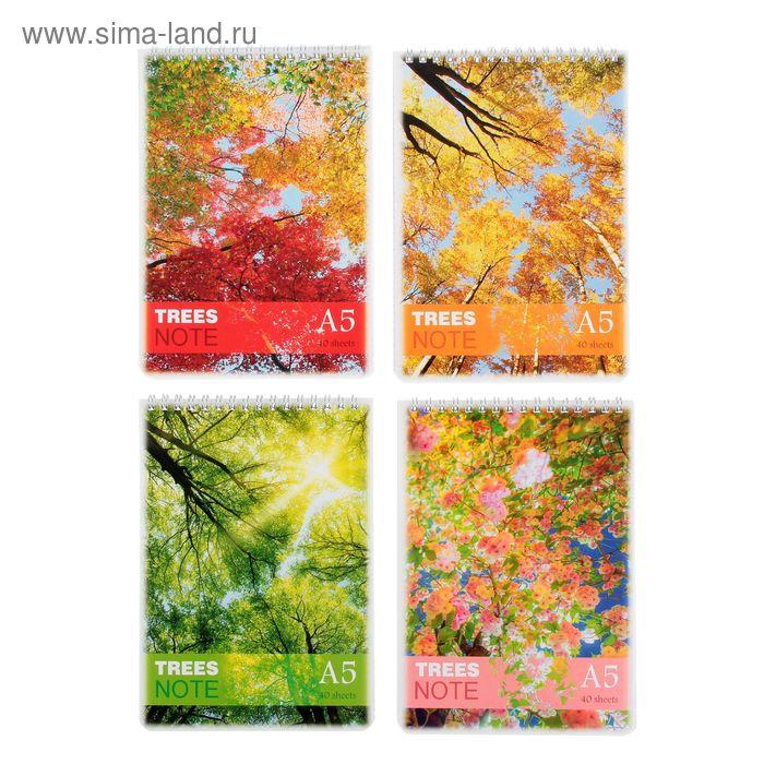 Блокнот А5, 40 листов на гребне Color tree, МИКС