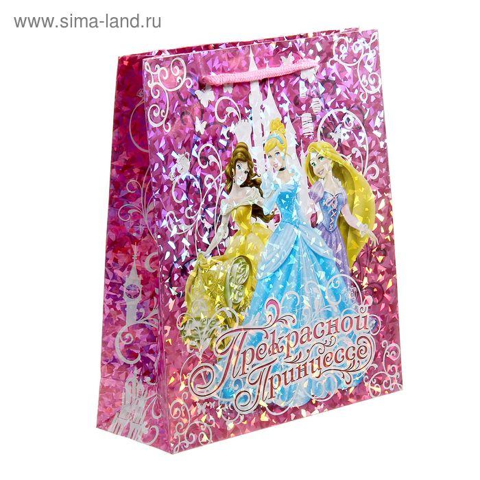 """Пакет голография вертикальный """"Прекрасной принцессе"""", Принцессы, 23 х 27 см"""