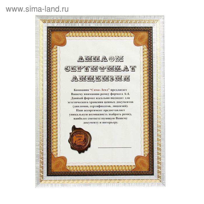 """Фоторамка формат А4 """"История"""" серебро"""