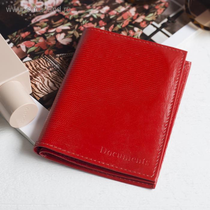 Обложка для автодокументов и паспорта, красная игуана