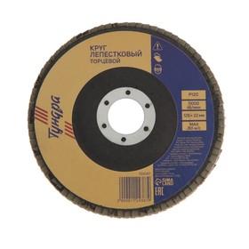 Круг лепестковый торцевой TUNDRA, 125 х 22 мм, Р120
