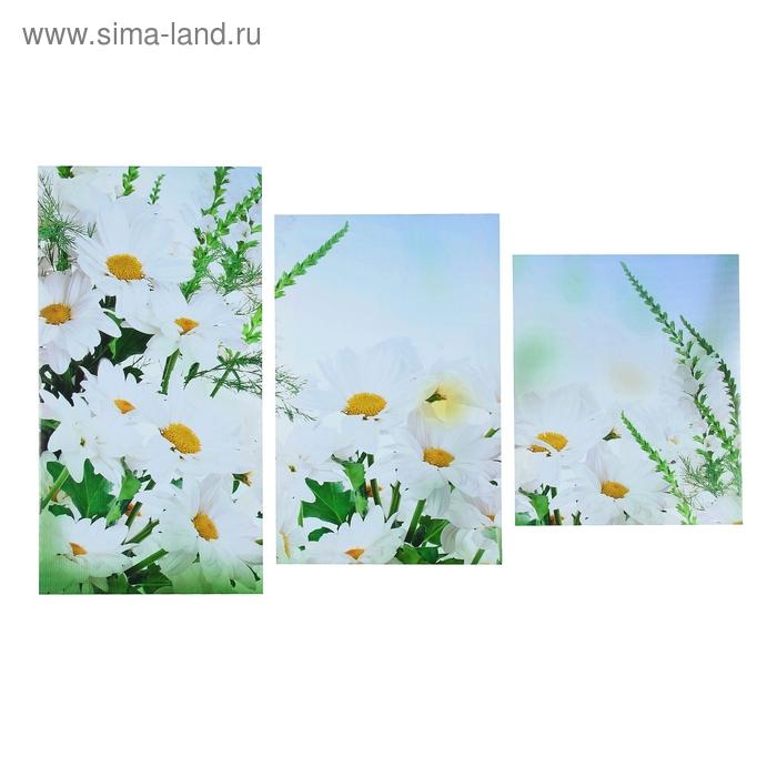 """Модульная картина на холсте с подрамником """"Ромашковое поле"""""""