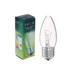 Лампа накаливания Favor ДС, Е27, 40 Вт, 230 В