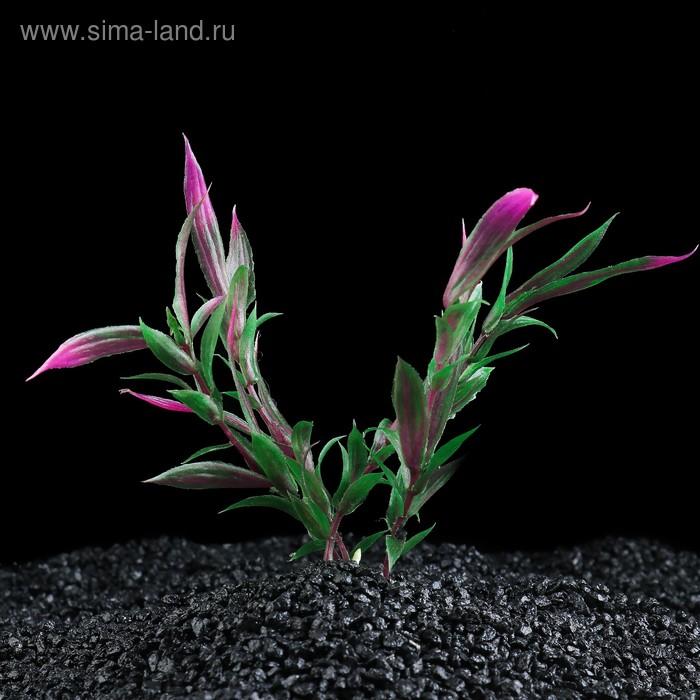 Растение искусственное аквариумное Альтернантера Рейнека, 20 см