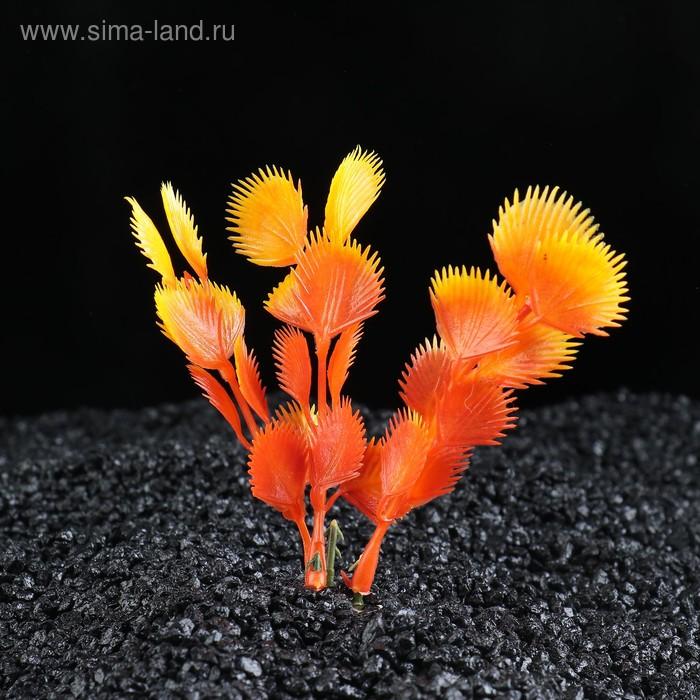 Растение искусственное аквариумное Незея крассикаулис, 10 см