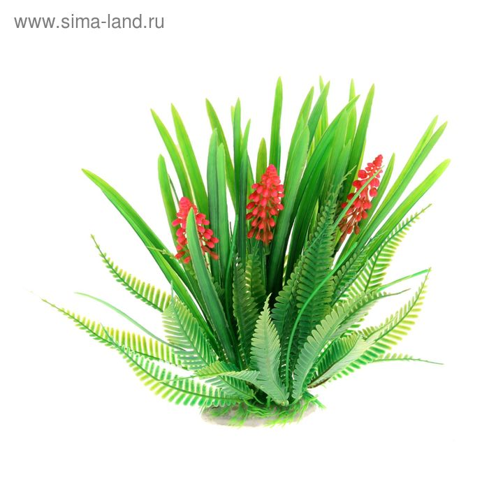Растение искусственное аквариумное искусственное Апоногетон волнистый, 16 х 9 х 23 см