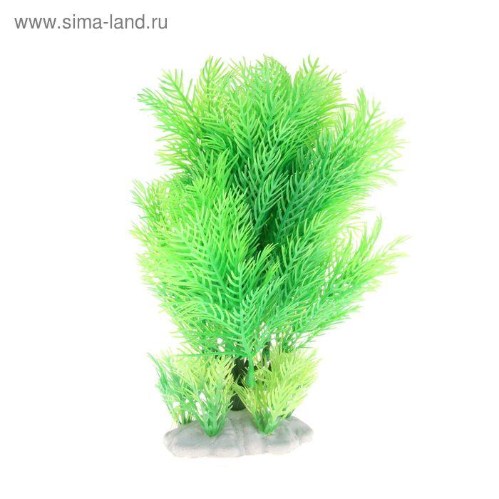 Растение искусственное аквариумное Кабомба, 28 х 10 х 27 см