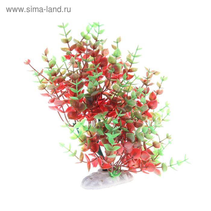 Растение искусственное аквариумное искусственное Жерушник водный, 28 х 12 х 28 см