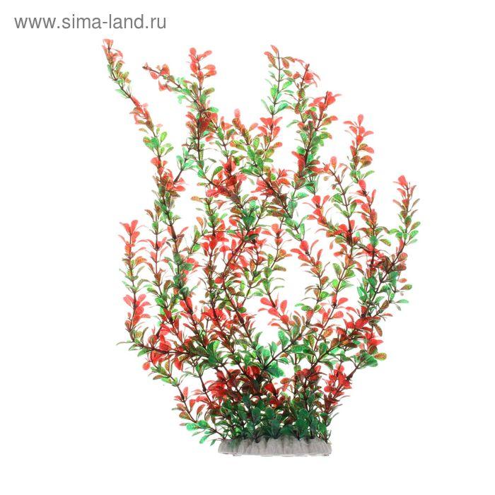 Растение искусственное аквариумное высокое Перистолистник красный, 15 х 8 х 54 см