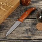 """Нож """"Эко"""", лезвие 9,5 см"""
