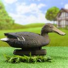 "Фигура подсадная ""Широконоска"" утка, 41 х 14 х 22 см"
