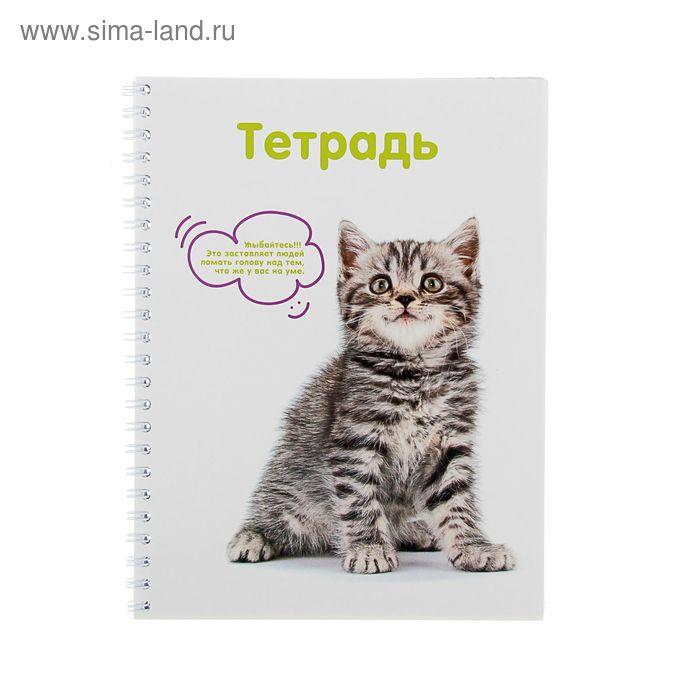 Тетрадь 80 листов клетка на гребне №1 School Animals, картонная обложка, УФ-лак