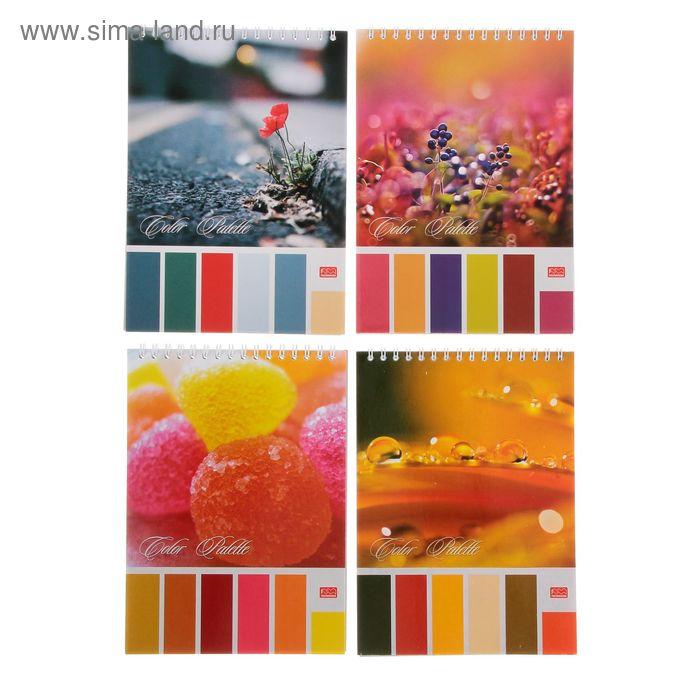 Блокнот А5, 60 листов на гребне Color Palette, УФ-лак, МИКС