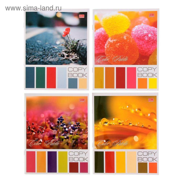 Тетрадь 48 листов клетка Color Palette, картонная обложка, выборочный УФ-лак, МИКС