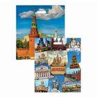 """Пакет """"Москва"""", полиэтиленовый с вырубной ручкой, двухсторонний, 47,5 х 39 см, 60 мкм"""