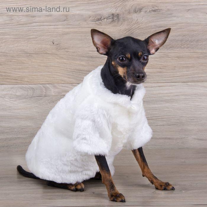 Шубка белая для собак, (ДС=21 см, ОГ=34 см, ОШ=24 см)  S
