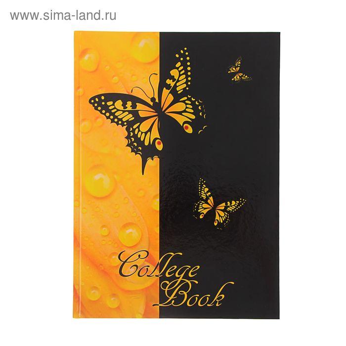 """Колледж-тетрадь А4 80 листов клетка """"Бабочки"""", твердая обложка, выборочный лак"""