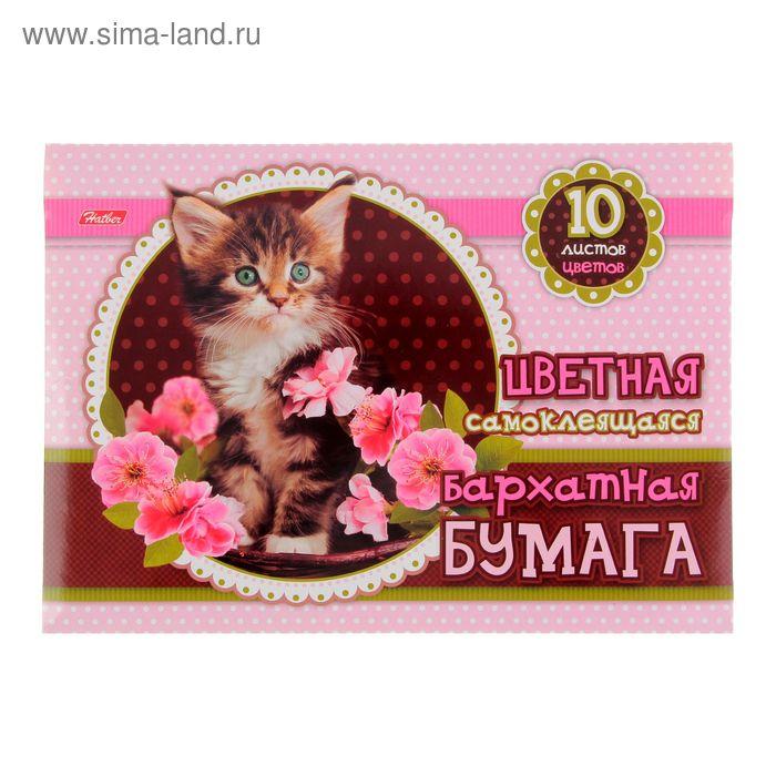 """Бумага цветная бархатная самоклеящаяся А5, 10 листов, 10 цветов """"Котенок в цветах"""" в папке, европодвес"""