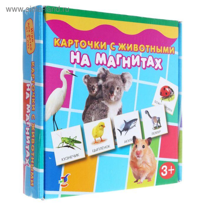 Игра на магнитах «Карточки с животными»