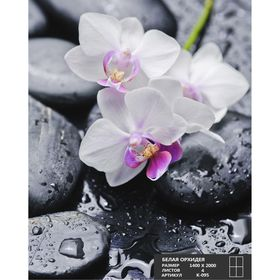 Фотообои К-095 «Белая орхидея» (4 листа), 140 × 200 см Ош