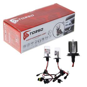 Комплект ксеноновых ламп TORSO H4S-L, для блоков DC, 12 В, 4300 К, 2 шт.